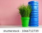 green wheatgrass and foam... | Shutterstock . vector #1066712735