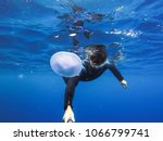 observation of jellyfish during ... | Shutterstock . vector #1066799741