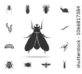 fly. detailed set of insects... | Shutterstock .eps vector #1066817384