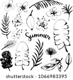 leaves  flowers sketch hand... | Shutterstock .eps vector #1066983395