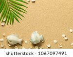 summer background with green... | Shutterstock . vector #1067097491