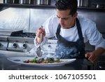 chef preparing octopus recipe... | Shutterstock . vector #1067105501