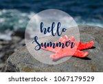 hello summer vacation message... | Shutterstock . vector #1067179529