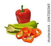 fresh  nutritious  tasty red... | Shutterstock .eps vector #1067202365
