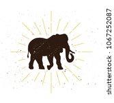 retro elephant silhouette logo. ... | Shutterstock .eps vector #1067252087