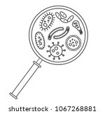 bacterial microorganism in a... | Shutterstock .eps vector #1067268881