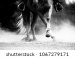 nice spin mouvement on a...   Shutterstock . vector #1067279171