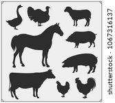 farm animals vector icons set. | Shutterstock .eps vector #1067316137