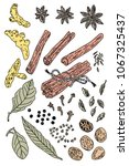 a set of spices painted with a...   Shutterstock .eps vector #1067325437
