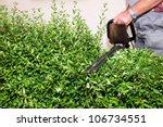 hedge cutting | Shutterstock . vector #106734551