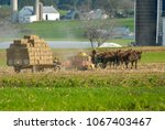 Small photo of Amish Family Harvesting the Fields With a 6 horse Team on a Warm Autumn Sunny Day dust and dirt Blowing