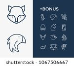 animal icon set and turtle with ...