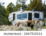 yellowstone national park ... | Shutterstock . vector #1067515211