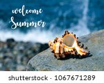 welcome summer vacation message ... | Shutterstock . vector #1067671289