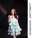 beautiful fashion model girl...   Shutterstock . vector #1067706677