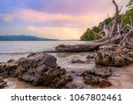 beach sunset with scenic...   Shutterstock . vector #1067802461