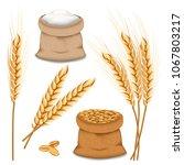 barley spikelets mockup set.... | Shutterstock .eps vector #1067803217