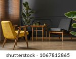 elegant and dark apartment... | Shutterstock . vector #1067812865