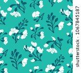 padauk flower  pterocarpus... | Shutterstock .eps vector #1067845187