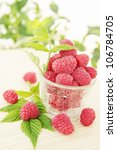 Fresh berries are juicy raspberries, summer still life - stock photo