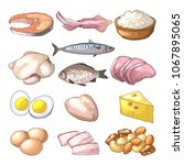 useful products. illustrations... | Shutterstock . vector #1067895065