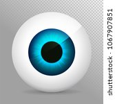 eye. realistic 3d eyeball... | Shutterstock .eps vector #1067907851