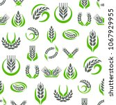 cereal ears and grains... | Shutterstock .eps vector #1067929955