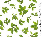 Seamless Pattern With Green Te...