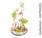 vegetable salad  vector.... | Shutterstock .eps vector #1067942291