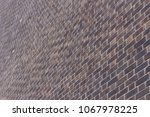 large purple prick wall ... | Shutterstock . vector #1067978225