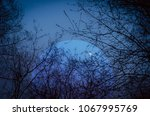 landscape with moon and branches | Shutterstock . vector #1067995769