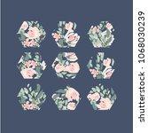 hexagons. flower pattern.   Shutterstock .eps vector #1068030239