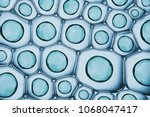 macro close up of soap bubbles... | Shutterstock . vector #1068047417