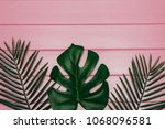 different tropical leaf  on... | Shutterstock . vector #1068096581