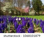 south park of sofia  bulgaria | Shutterstock . vector #1068101879