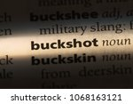 Small photo of buckshot word in a dictionary. buckshot concept.