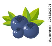 vector blueberry with green... | Shutterstock .eps vector #1068262301