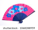 Pink Fan Isolated