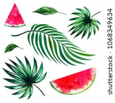jungle watercolor collection.... | Shutterstock . vector #1068349634