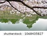 osaka castle with cherry blossom | Shutterstock . vector #1068435827