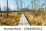 beautiful swamp and wooden... | Shutterstock . vector #1068485621