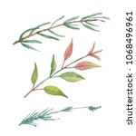 tree branches with fresh  young ... | Shutterstock . vector #1068496961