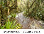 floodwater pouring through the... | Shutterstock . vector #1068574415