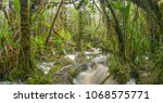 floodwater pouring through the...   Shutterstock . vector #1068575771