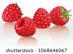 raspberries on a white...   Shutterstock .eps vector #1068646067