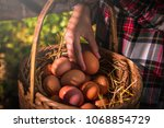 the lifestyle of the farm in... | Shutterstock . vector #1068854729