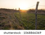 Fenced Field Against Wild...