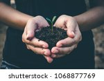 hand for planting trees back to ... | Shutterstock . vector #1068877769
