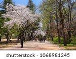 seoul  korea  april 10  2018 ... | Shutterstock . vector #1068981245