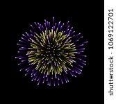 beautiful firework. couple... | Shutterstock .eps vector #1069122701
